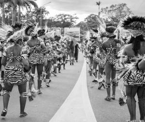 Tribu Safari 2018